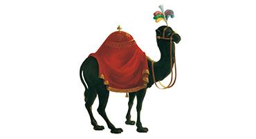 Zum schwarzen Kameel Logo